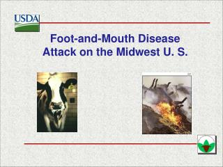 Foot-and-Mouth Disease Attack on the Midwest U. S.