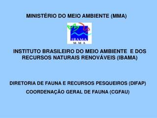 INSTITUTO BRASILEIRO DO MEIO AMBIENTE  E DOS RECURSOS NATURAIS RENOVÁVEIS (IBAMA)