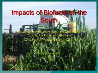 Impacts of Biofuels on the South