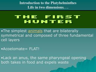 Introduction to the Platyhelminthes Life in two dimensions. . .
