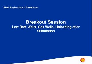 Breakout Session Low Rate Wells, Gas Wells, Unloading after Stimulation
