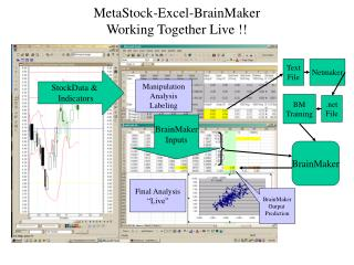 MetaStock-Excel-BrainMaker Working Together Live !!