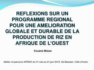 REFLEXIONS SUR UN PROGRAMME REGIONAL POUR UNE AMELIORATION GLOBALE ET DURABLE DE LA PRODUCTION DE RIZ EN AFRIQUE DE L'O