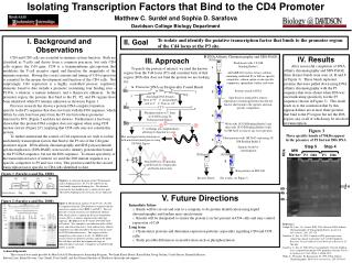 Isolating Transcription Factors that Bind to the CD4 Promoter Matthew C. Surdel and Sophia D. Sarafova Davidson College