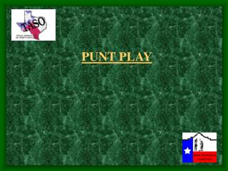 PUNT PLAY