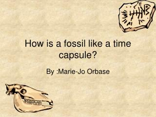 How is a fossil like a time capsule?