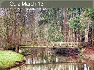 Quiz March 13 th