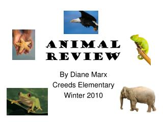 Animal Review