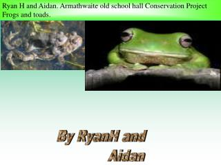 Ryan H and Aidan. Armathwaite old school hall Conservation Project Frogs and toads.