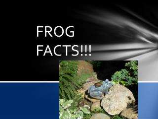 Frogs facts!!
