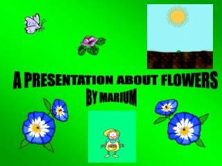 A PRESENTATION ABOUT FLOWERS