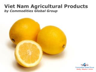 Viet Nam Agricultural Products by Commodities Global Group
