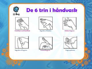 De 6 trin i håndvask