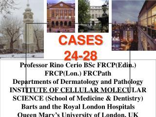 CASES 24-28
