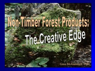 Non-Timber Forest Products: