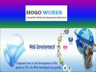 Want To Develope Your Business Website, Try HOGO