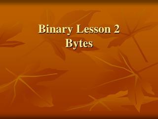 Binary Lesson 2 Bytes