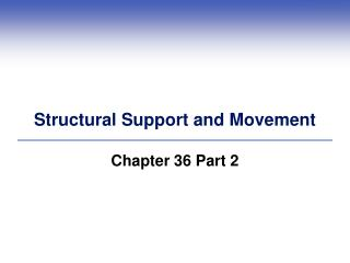 Structural Support and Movement