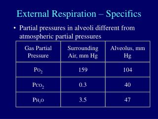 External Respiration – Specifics
