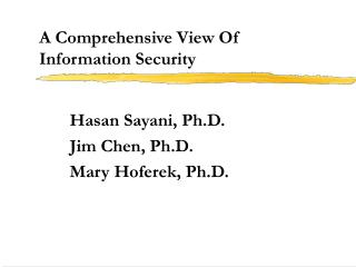 A Comprehensive View Of  Information Security