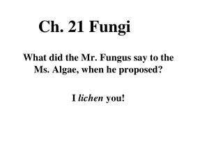 Ch. 21 Fungi