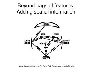 Beyond bags of features: Adding spatial information