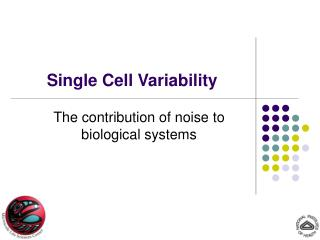 Single Cell Variability
