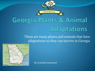Georgia Plants & Animal Adaptations
