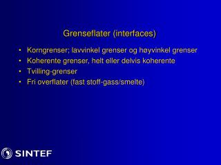 Grenseflater (interfaces)