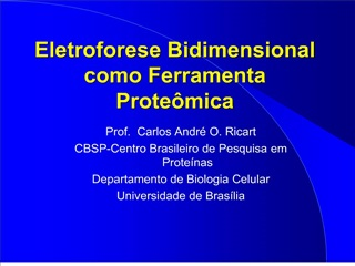 Eletroforese Bidimensional como Ferramenta Prote mica