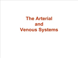 The Arterial  and  Venous Systems