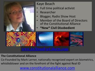 Kaye Beach Full time political activist Researcher Blogger, Radio Show Host Member of the Board of Directors of the Con