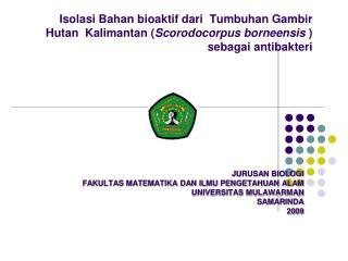 Isolasi Bahan bioaktif dari Tumbuhan Gambir Hutan   Kalimantan ( Scorodocorpus borneensis  )  sebagai antibakteri