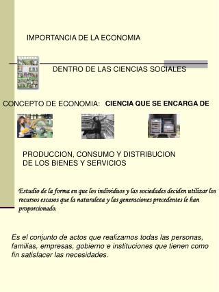 IMPORTANCIA DE LA ECONOMIA