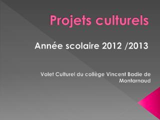 Projets culturels