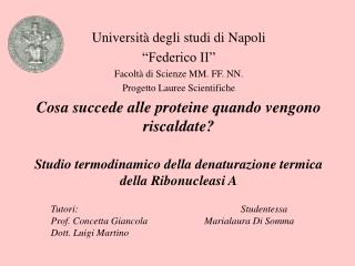"""Università degli studi di Napoli  """"Federico II"""" Facoltà di Scienze MM. FF. NN. Progetto Lauree Scientifiche"""