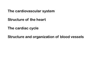 The cardiovascular system  Structure of the heart  The cardiac cycle  Structure and organization of blood vessels