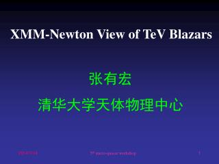XMM-Newton View of TeV Blazars