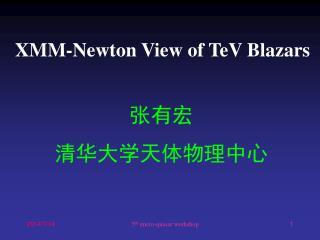 XMM-Newton View of TeV Blazars