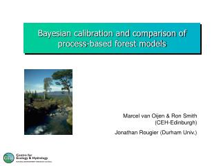 Bayesian calibration and comparison of process-based forest models