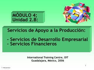 Servicios de Apoyo a la Producción:  - Servicios de Desarrollo Empresarial  - Servicios Financieros