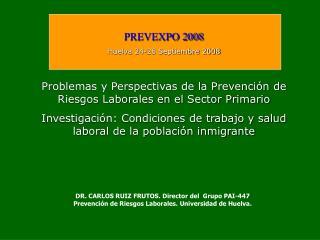 PREVEXPO 2008 Huelva 24-26 Septiembre 2008 Problemas y Perspectivas de la Prevención de Riesgos Laborales en el Sector