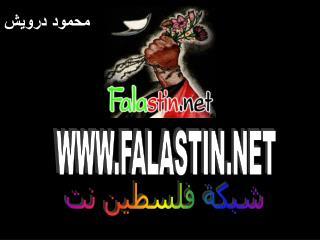 WWW.FALASTIN.NET