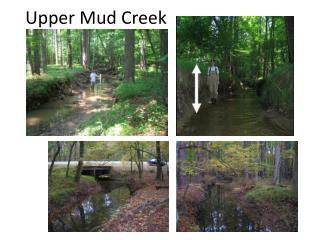 Upper Mud Creek