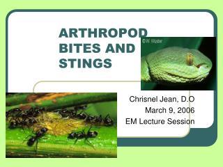 ARTHROPOD  BITES AND  STINGS