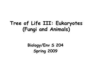 Tree of Life III: Eukaryotes Fungi and Animals