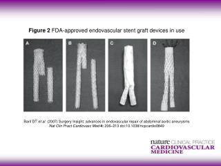 Figure 2  FDA-approved endovascular stent graft devices in use