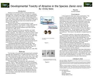 Developmental Toxicity of Atrazine in the Species  Danio rerio By: Christy Bates