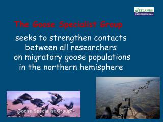 The Goose Specialist Group