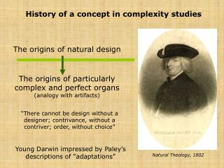 History of a concept in complexity studies